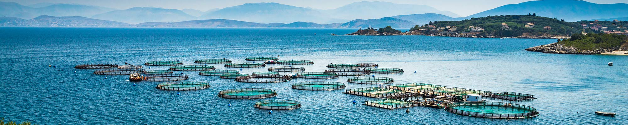Aquaculture and fisheries
